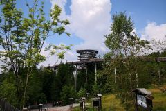 Der Waldwipfelweg von unten